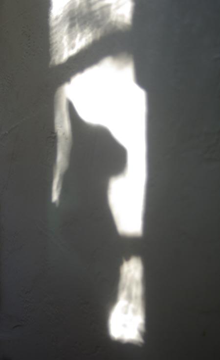 Window Silhouette 1