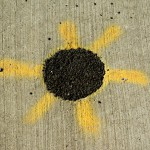 tar and spraypaint on sidewalk