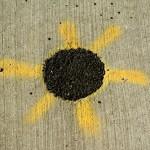 tar and spraypaint on sidewalk