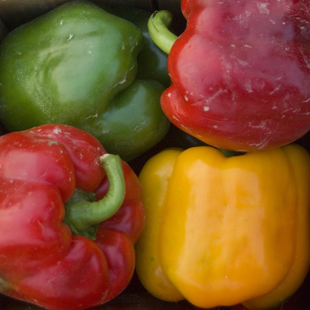 four sweet peppers in basket