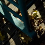 photo of leaves and rocker