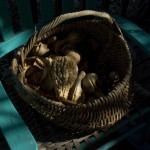 basket of gourds on rocker