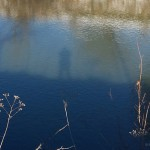 shadow of person and tree on water