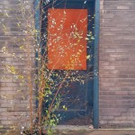 door with tree