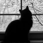 Ophelia Watching Snow