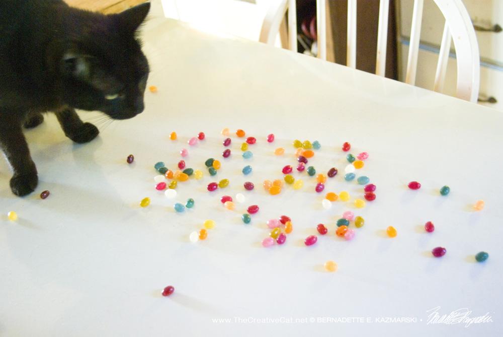 Jelly Bean Meets his Namesake