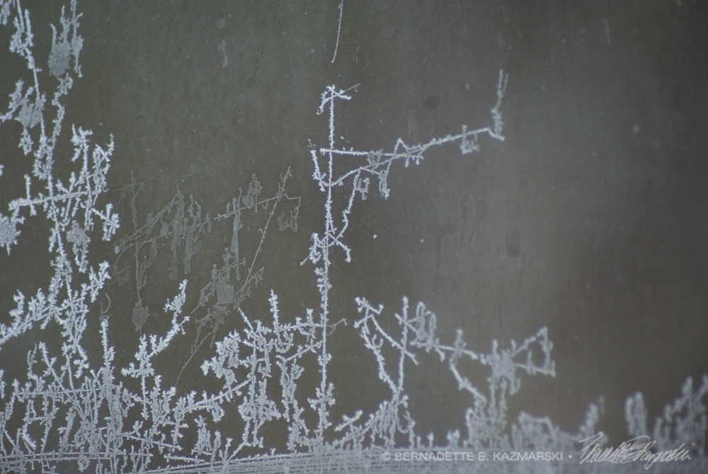 Frost Dancer