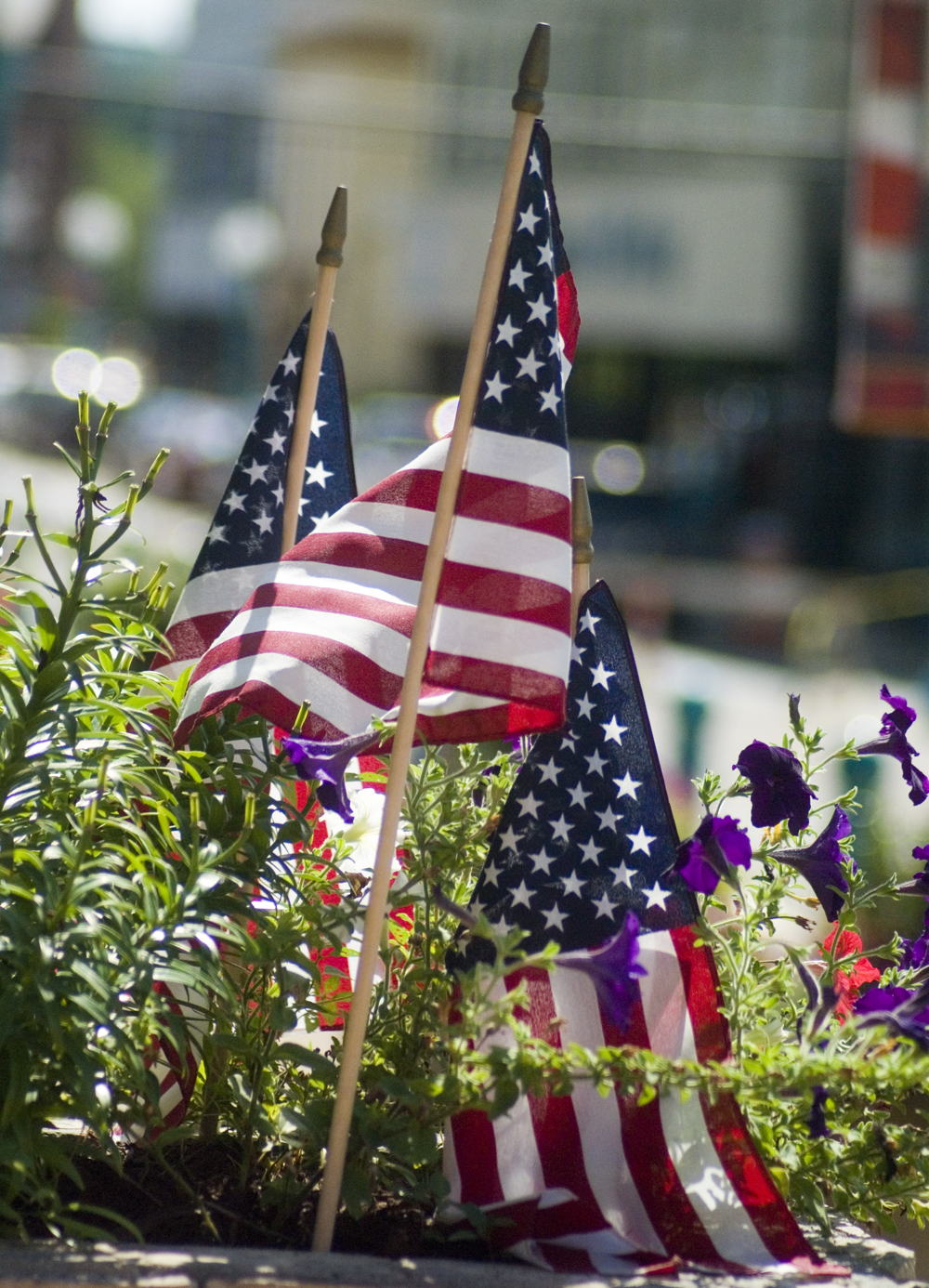 Flags and flowers.