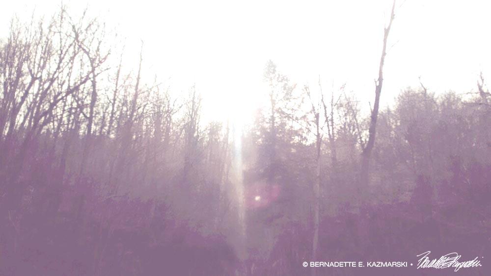 The Light Returns